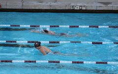 The Warriors compete in the butterfly stroke competition.