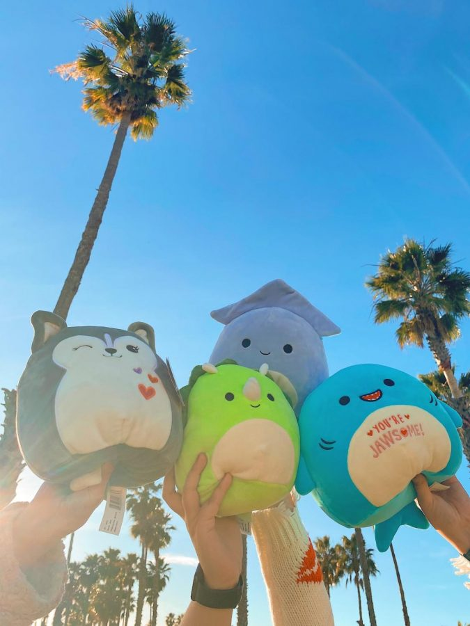 Squishmallows in Santa Barbara