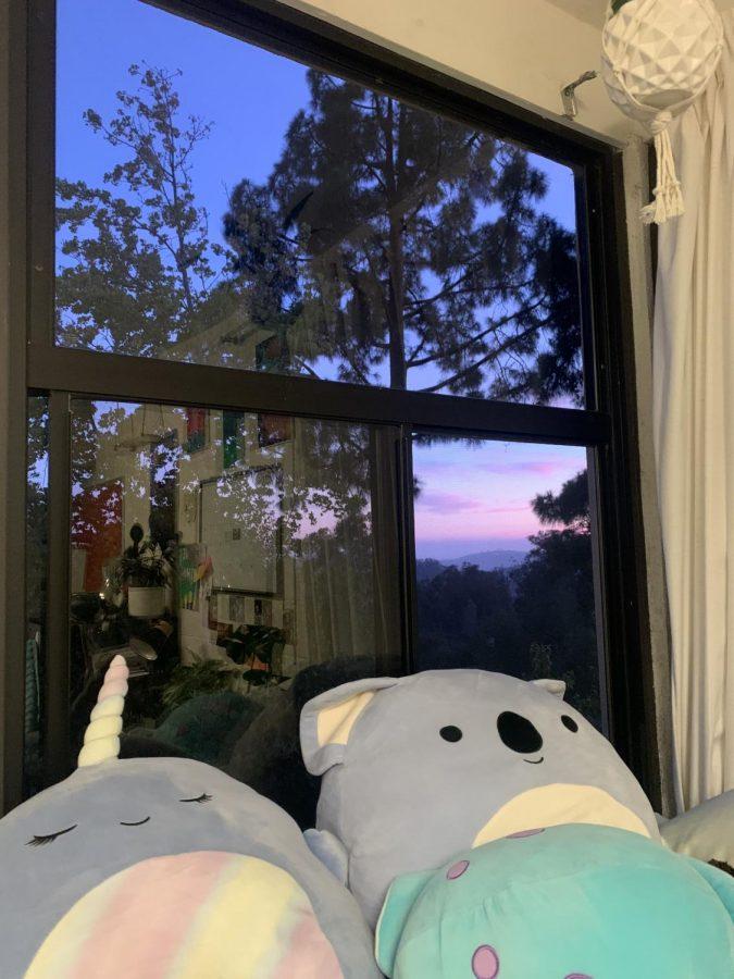 View from Tejedas dorm room window.