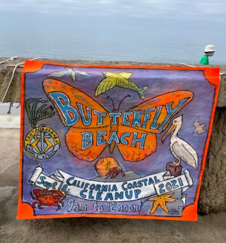 Butterfly Beach California Coastal Cleanup