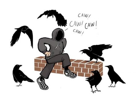 Eager student attempts to befriend local crows